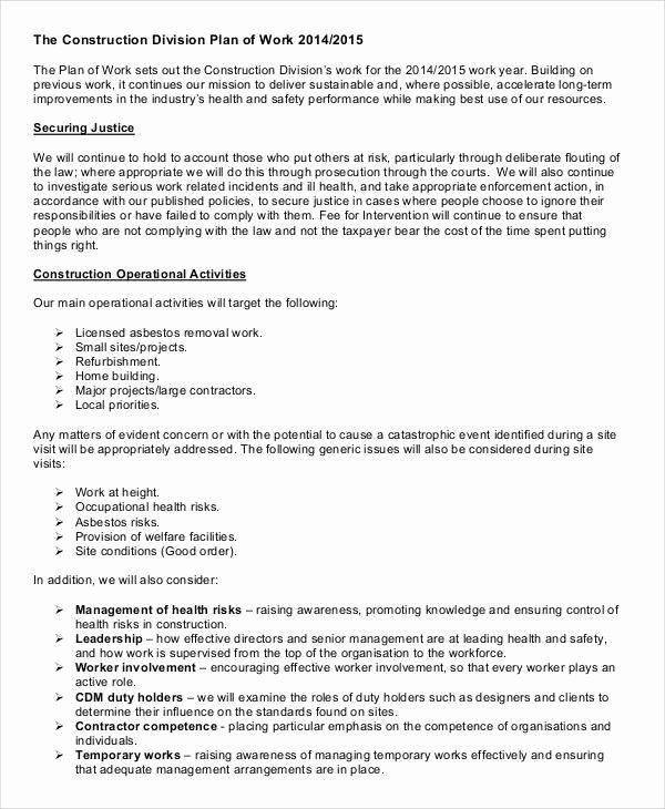 Sample Work Plan Template Inspirational 41 Sample Work Plans