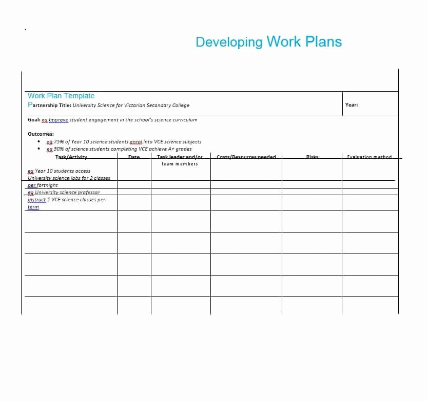 Sample Work Plan Template New Work Plan 40 Great Templates & Samples Excel Word