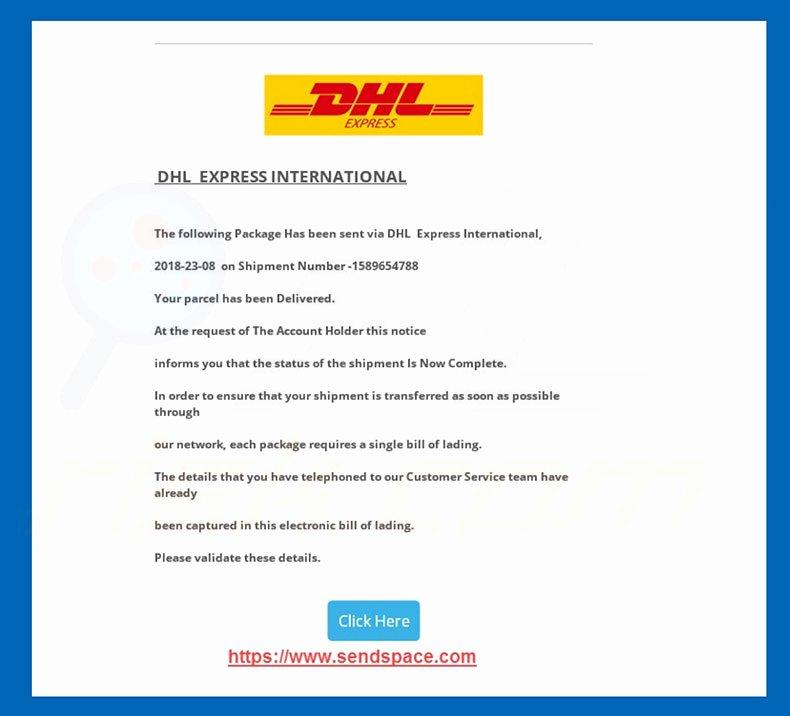 Shipper Letter Of Instruction format New Shipper S Letter Instruction Dhl Global forwarding