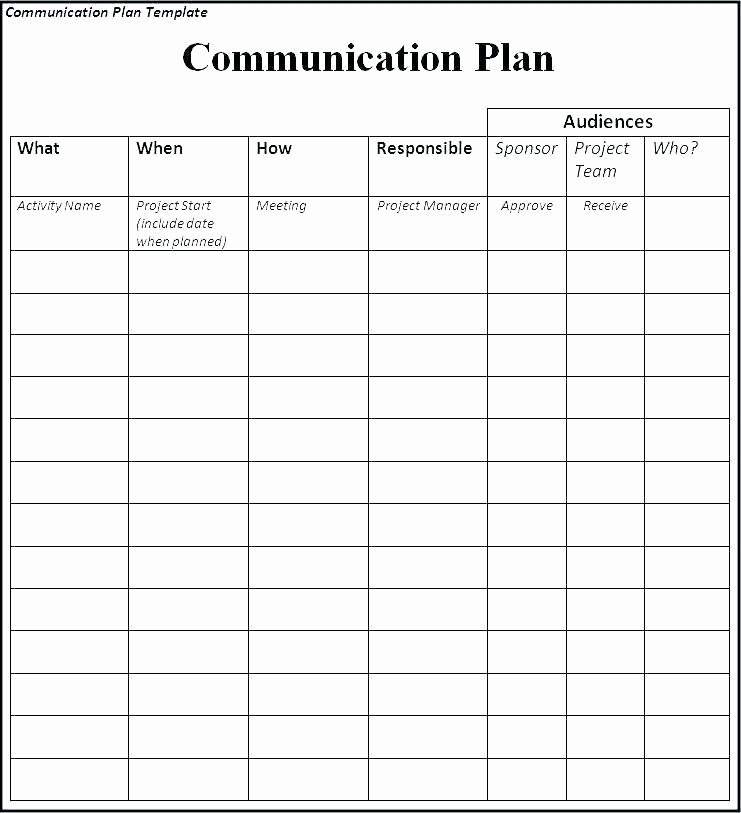Simple Communication Plan Template Elegant Basic P L Template