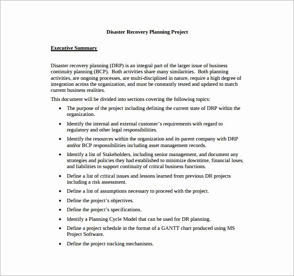 Simple Disaster Recovery Plan Template New for Simple Disaster Recovery Plan Template for Small