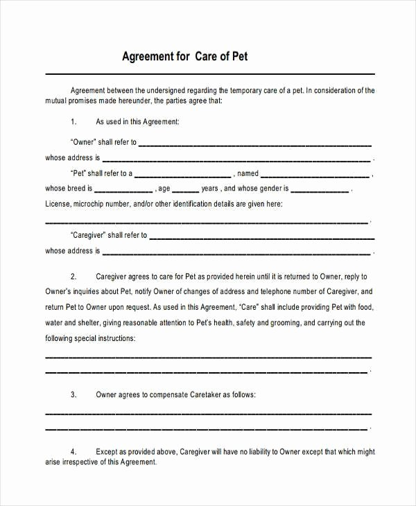 Simple Shared Well Agreement Inspirational 8 Custody Agreement form Samples Free Sample Example