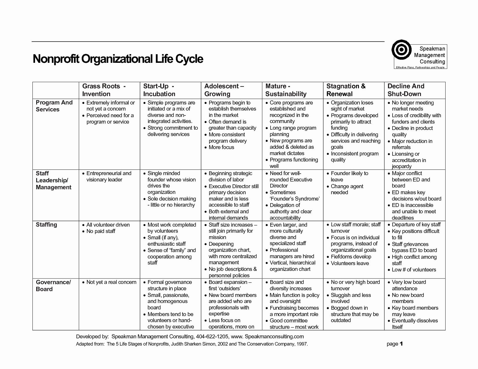 Simple Strategic Plan Template Elegant 22 Of Simple Strategic Plan Template