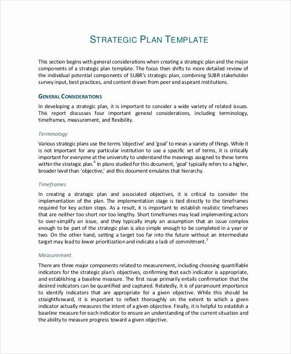 Simple Strategic Plan Template Luxury 50 Examples Of Strategic Plans Pdf Word