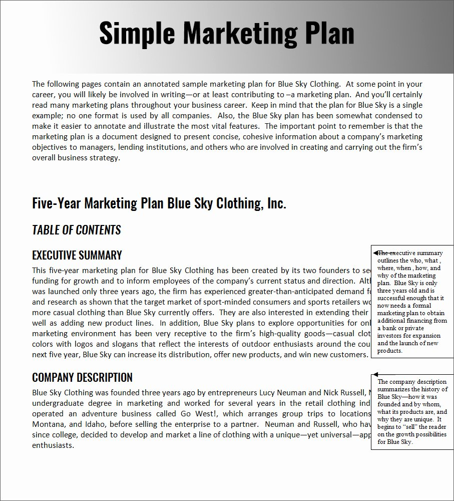 Simple Strategic Plan Template Unique 32 Free Marketing Strategy Planning Template Pdf Ppt