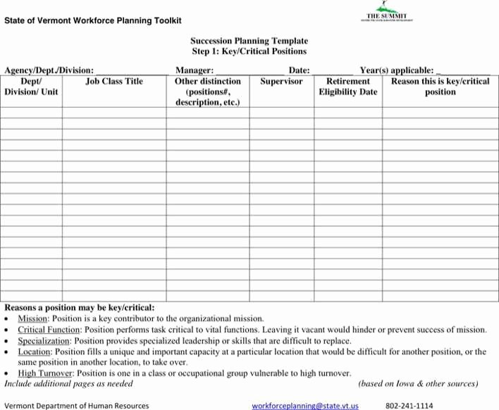 Simple Succession Plan Template Best Of Download Succession Planning form for Free Tidytemplates