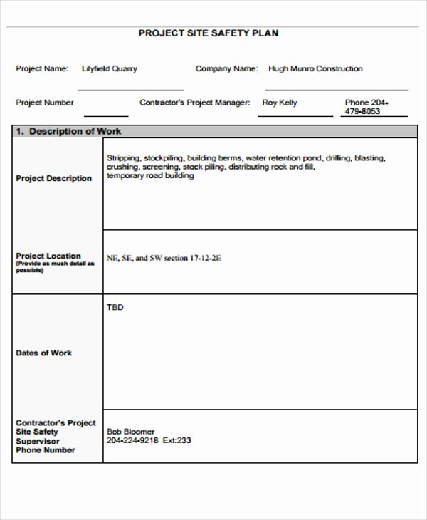 Site Specific Safety Plan Template New 29 Safety Plan formats
