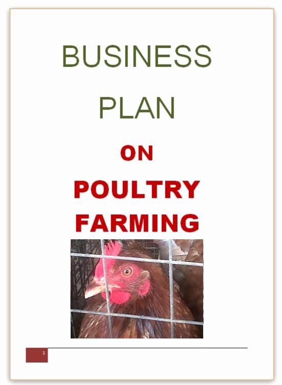 Small Farm Business Plan Template Inspirational Broiler Farming Business Plan Writersgroup749 Web Fc2
