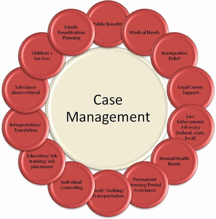 Social Work Treatment Plan Template Fresh 25 Best Ideas About Case Manager On Pinterest