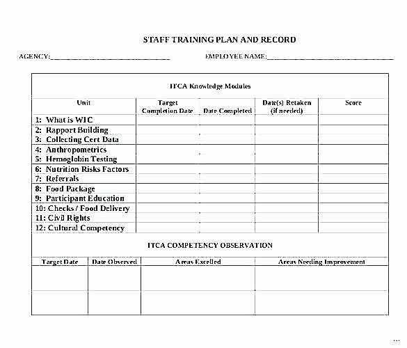 Software Training Plan Template New Training Program Sample Template – Thalmus