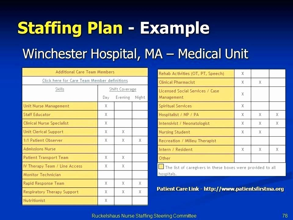 Staffing Plan Template Excel Lovely Staffing Plan Template Human Resources Staffing Plan