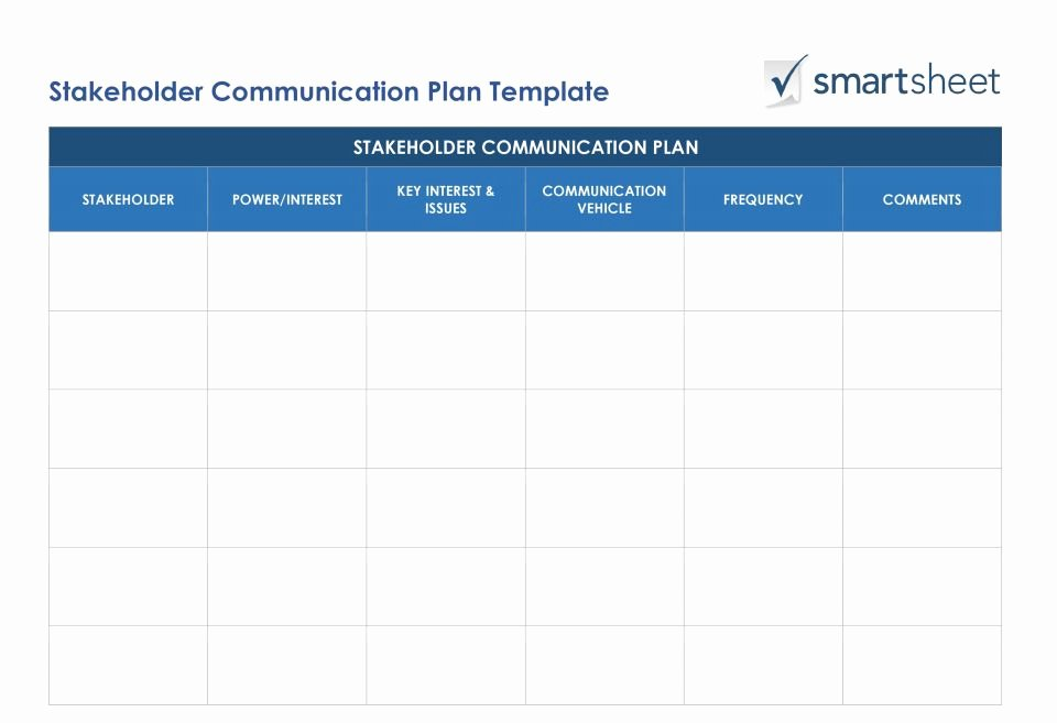 Stakeholders Management Plan Template Beautiful Crm Strategy Planning and Implementation