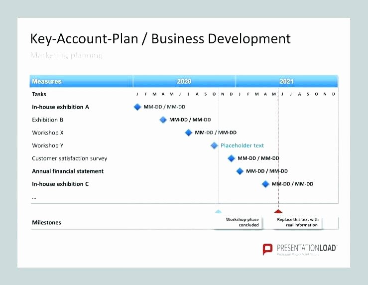 Strategic Account Plan Template Awesome Key Account Plan Template Key Account Plan Template Excel