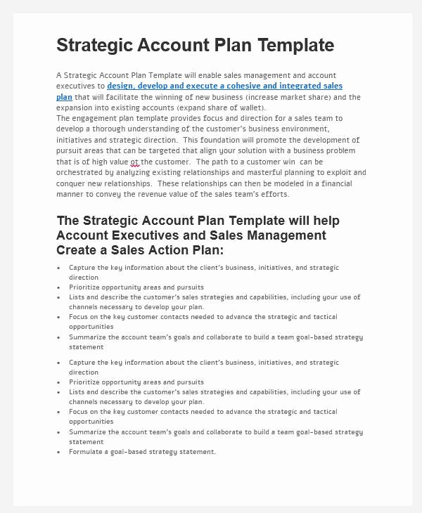 Strategic Account Plan Template Beautiful 31 Sales Plan formats