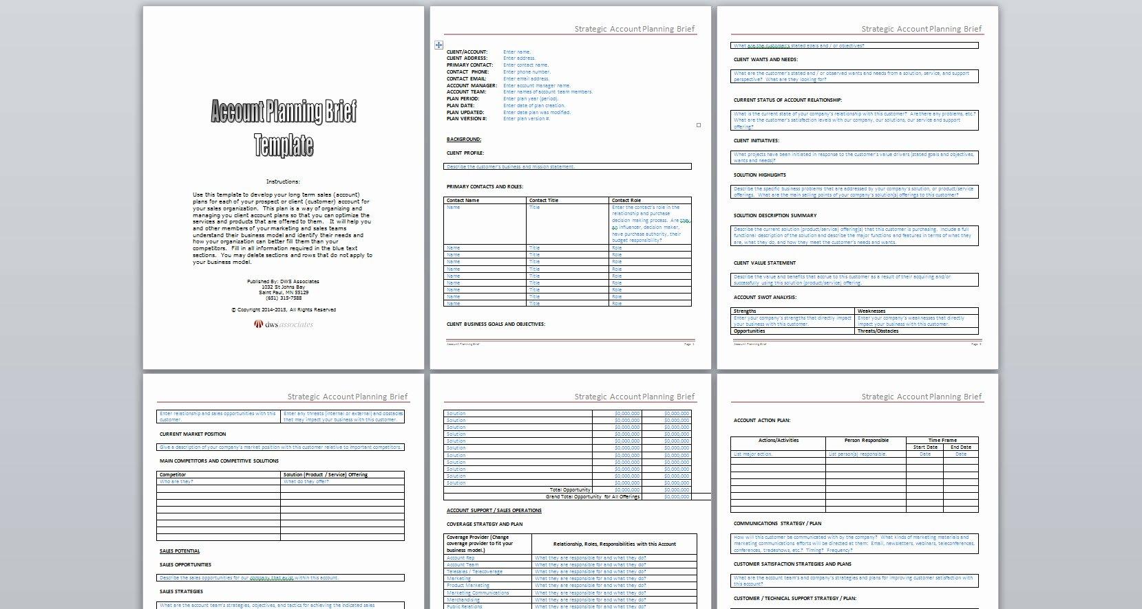 Strategic Account Plan Template Fresh Dws associates Strategic Account Planning Brief Template