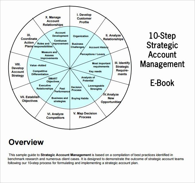 Strategic Account Plan Template Luxury Strategic Account Plan Template 8 Free Word Pdf