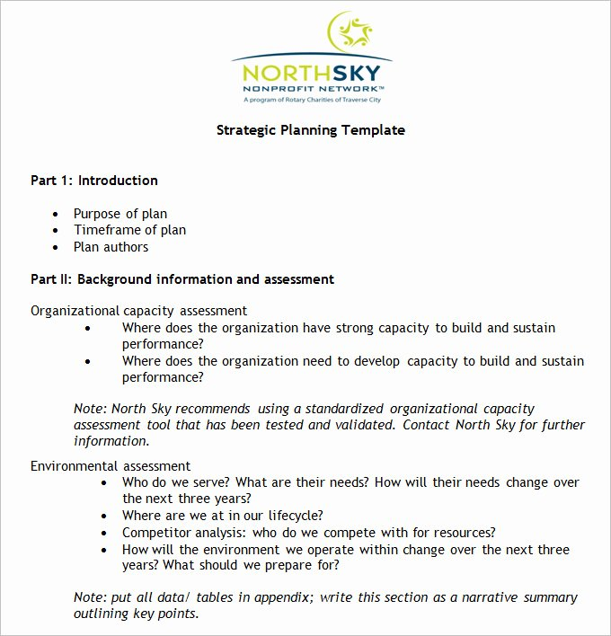 Strategic Plan for Nonprofits Template Luxury Non Profit Strategic Plan Template Free Word Pdf
