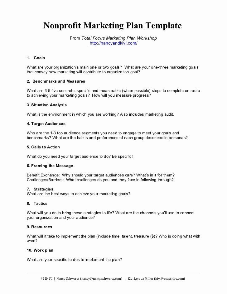 Strategic Plan for Nonprofits Template New Nonprofit Marketing Plan Template Summary