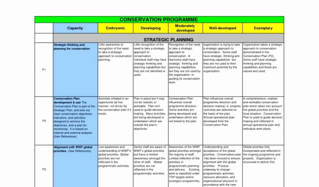 Strategic Plan Template Excel Luxury Small Business Strategic Planning Template Business
