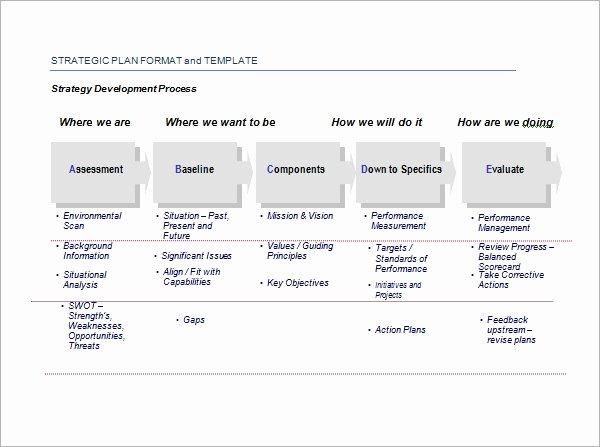Strategic Plan Template Excel Unique Strategic Plan Template