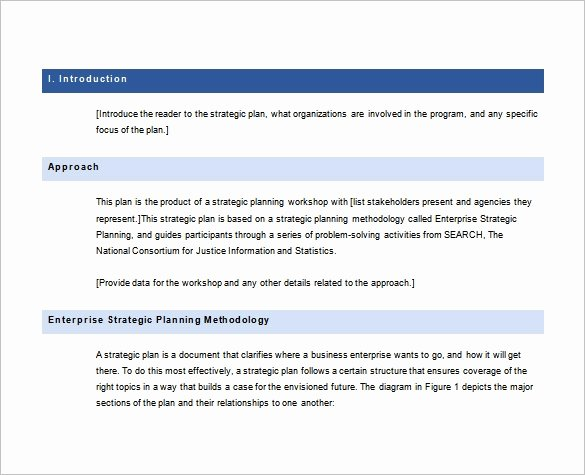 Strategic Plan Template Free Best Of 28 Strategic Plan Templates Pdf Docs
