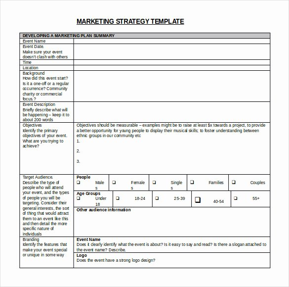 Strategic Plan Template Nonprofit Best Of Strategic Plan Template Word