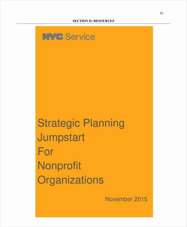 Strategic Plan Template Nonprofit Luxury 9 Nonprofit organization Strategic Plan Templates