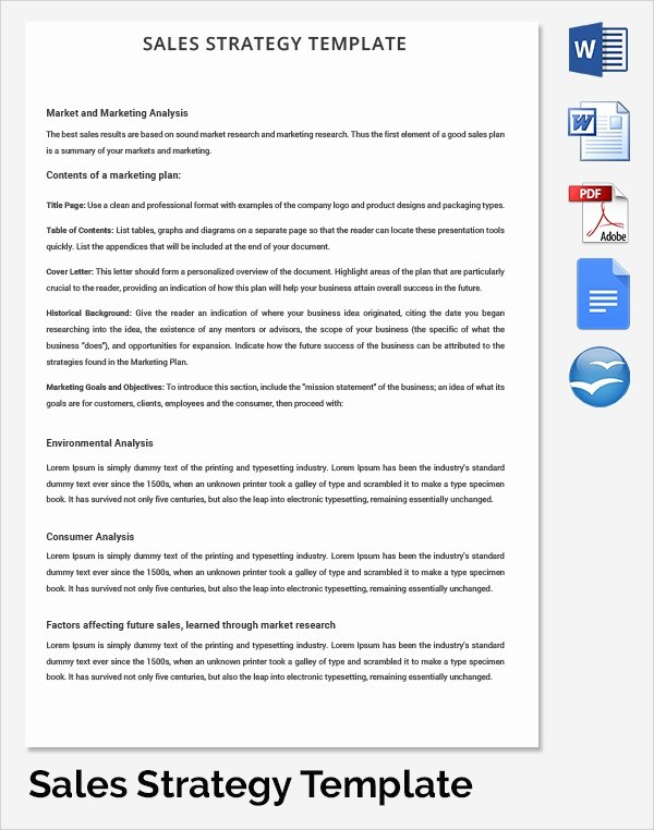 Strategic Sales Plan Template Awesome Sample Hr Strategy 16 Documents In Pdf