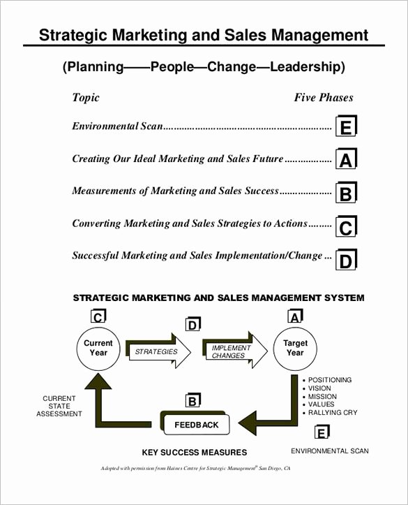 Strategic Sales Plan Template Beautiful 27 Sales Action Plan Templates Doc Pdf Ppt