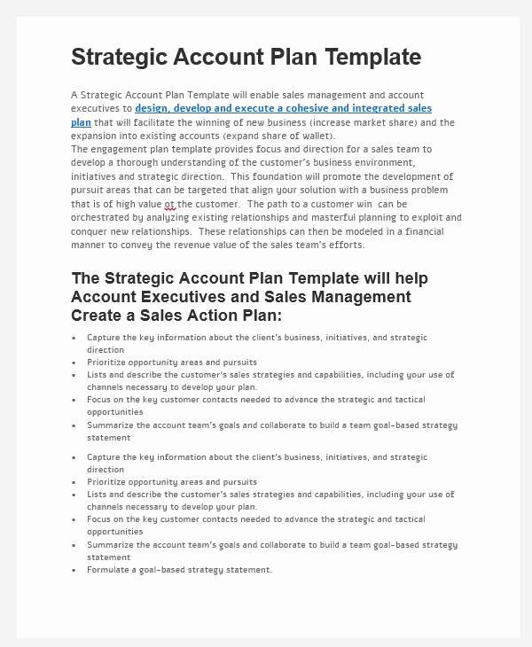 Strategic Sales Plan Template Beautiful 31 Sales Plan formats