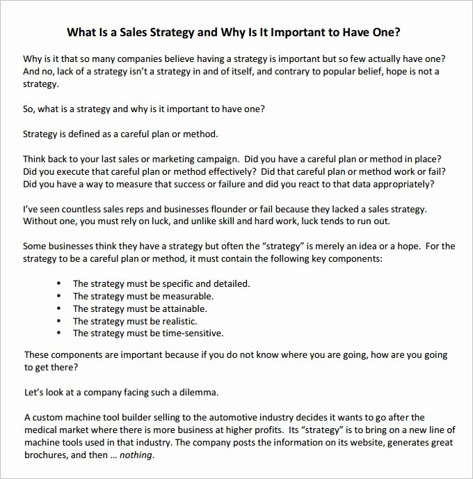 Strategic Sales Plan Template Elegant 13 Sales Strategy Template Doc Excel Pdf