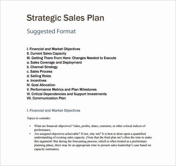 Strategic Sales Plan Template Lovely 7 Sales Plan Template Pdf Doc
