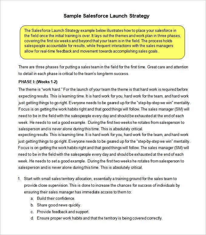Strategic Sales Plan Template Unique 12 Sales Strategy Templates Doc Pdf