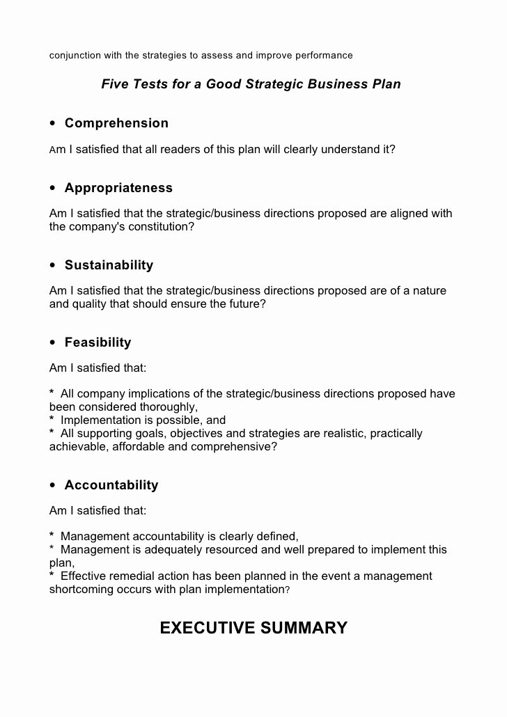 Strategy Business Plan Template Best Of 5 Prehensive Strategic Business Plan Template