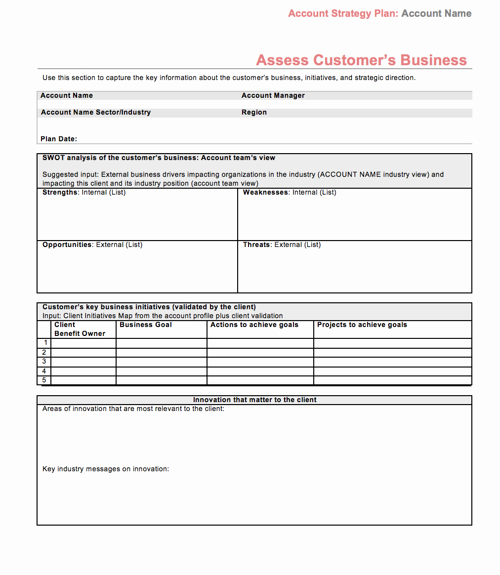 Strategy Plan Template Word Inspirational Strategic Account Plan Template