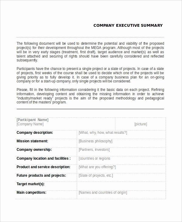 Summary Plan Description Template Awesome 7 Executive Summary Examples