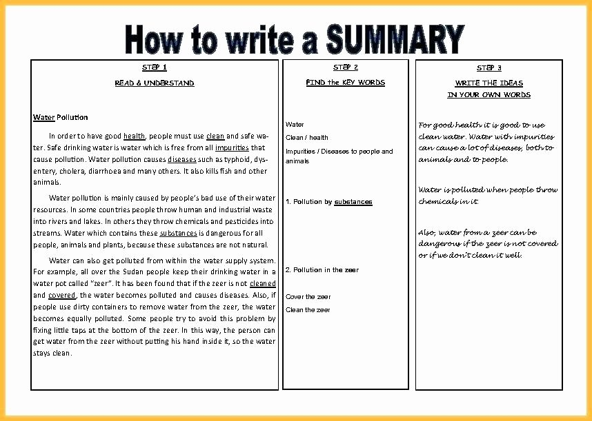 Summary Plan Description Template Beautiful Project Overview Document Template Project Executive