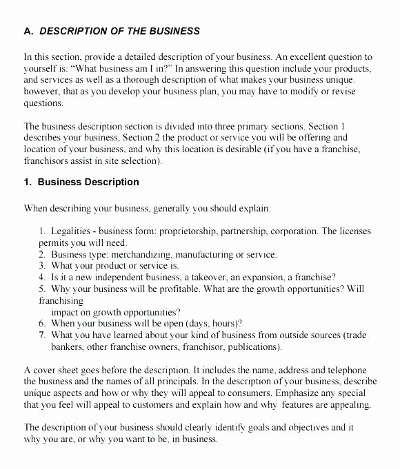 Summary Plan Description Template Elegant Pany Description In A Business Plan Construction