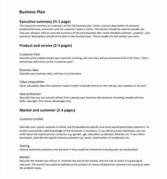Summary Plan Description Template Lovely Pany Description In A Business Plan Construction
