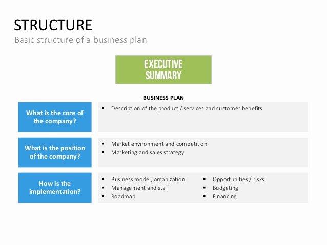 Summary Plan Description Template New Business Plan Template