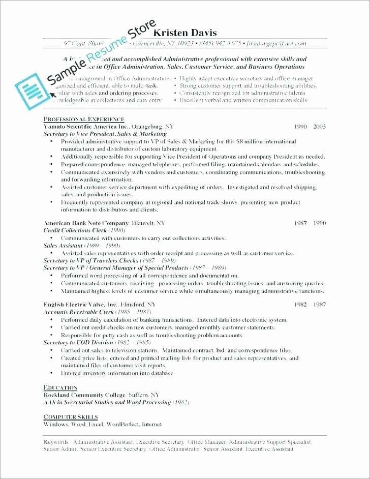 Summary Plan Description Template New Executive Summary Example Business Plan Management