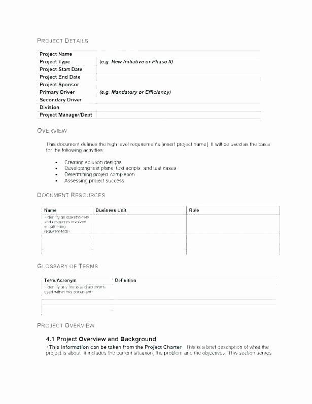 Summary Plan Description Template New Project Plan Overview Template Description Document