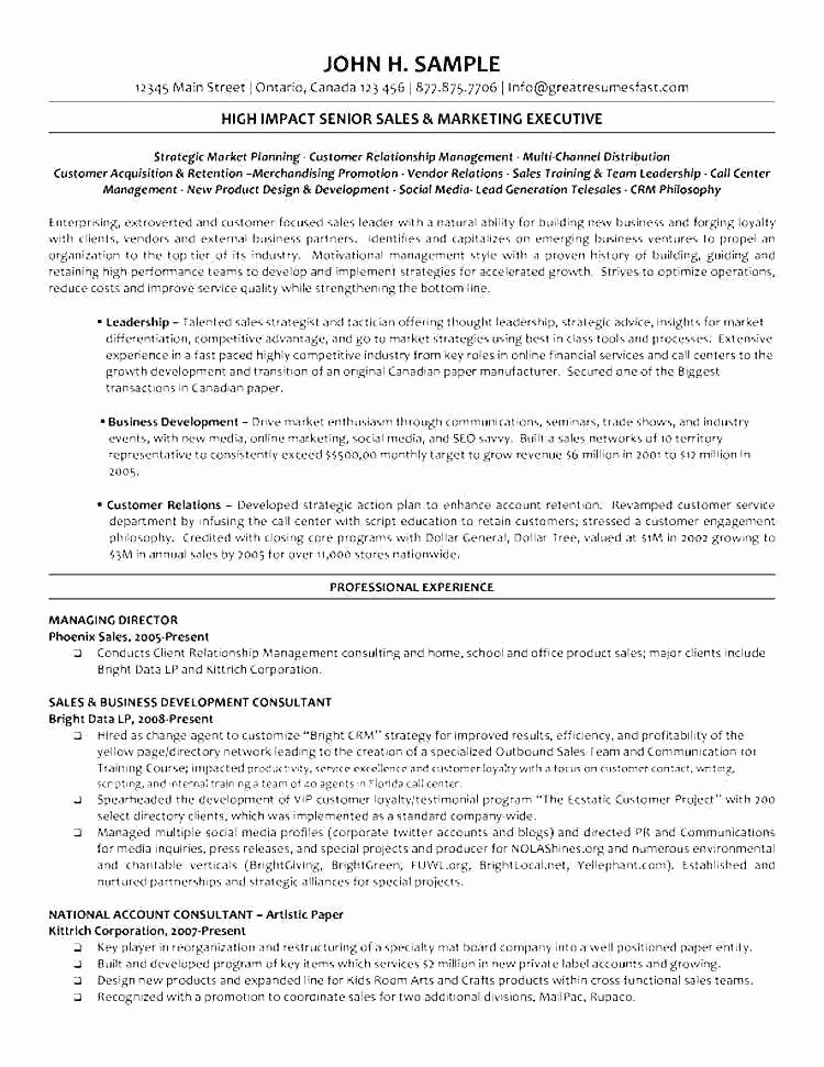 Summer Camp Lesson Plan Template Lovely top Result Seminar Lesson Plan Template Lovely 8 Planning