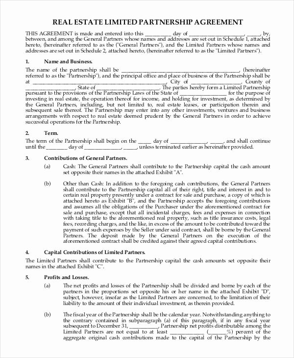 Sweat Equity Agreement Pdf New 13 Partnership Contract Templates Example Word Google