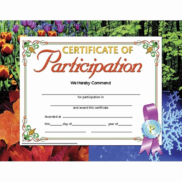 Talent Show Participation Certificate Beautiful Best 25 Teacher Resumes Ideas On Pinterest