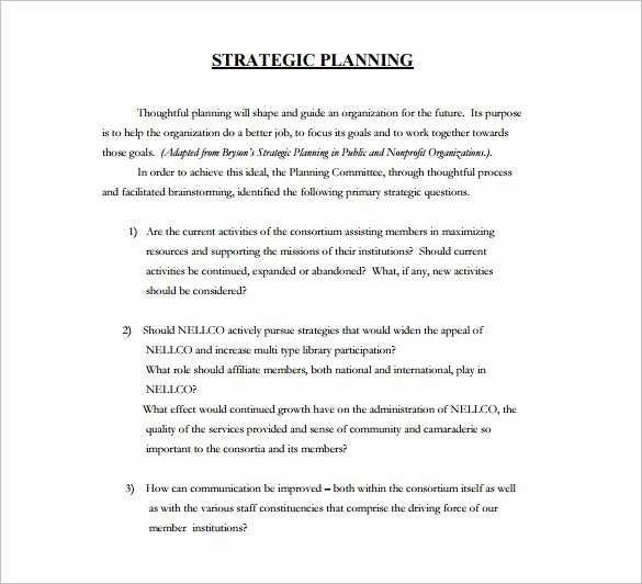 Template for Strategic Plan Awesome 28 Strategic Plan Templates Pdf Docs