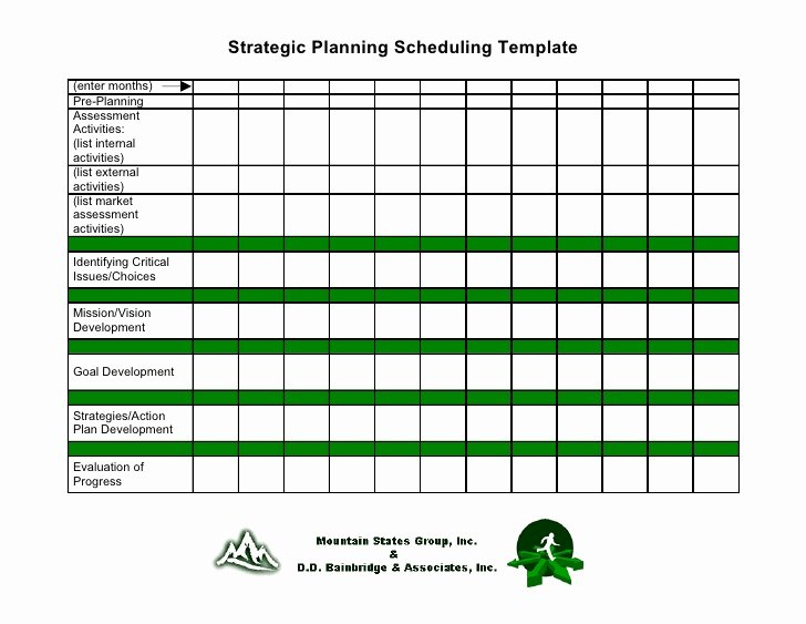 Template for Strategic Plan Lovely 19 Strategic Planning Scheduling Template