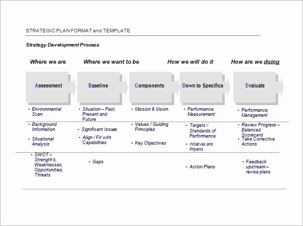 Template for Strategic Plan Lovely Strategic Plan Template