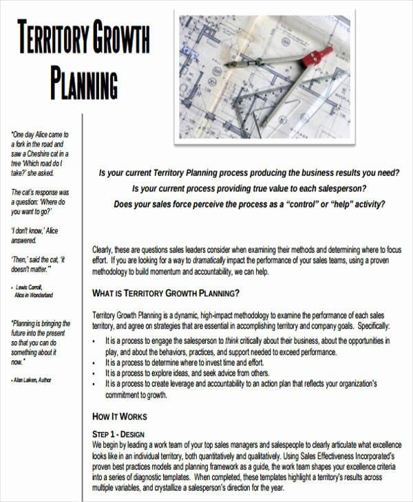 Territory Sales Plan Template Beautiful 38 Sample Sales Plan