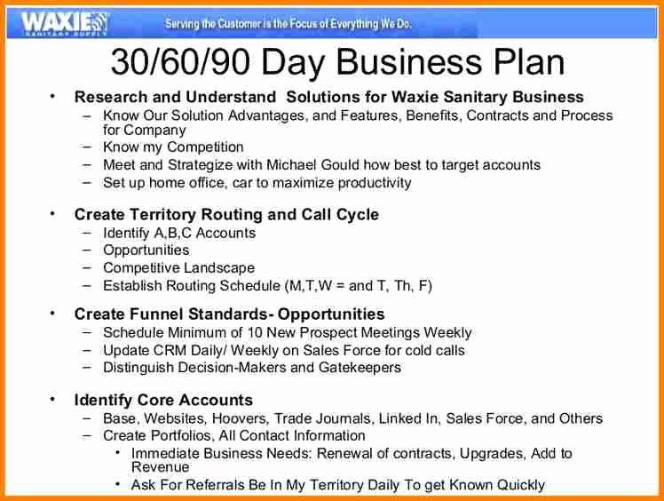 Territory Sales Plan Template Elegant 13 90 Day Sales Plan Template